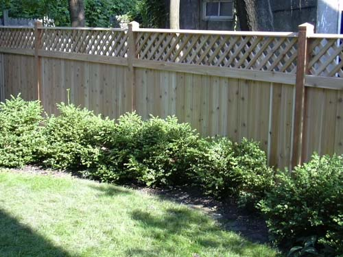 fence19